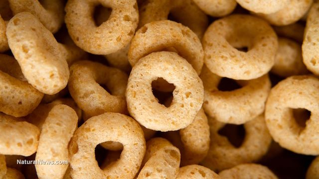 "General Mills conducts massive recall of 1.8 Million boxes of Cheerios & Honey Nut Cheerios, marketed as ""gluten free"" cereal but made with wheat"