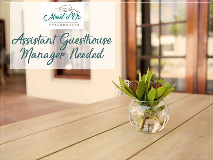 Mont d'Or Franschhoek is looking for an Assistant Guesthouse Manager. Available for as soon as possible.   If interested, please send your CV to: aldeklerk@gmail.com