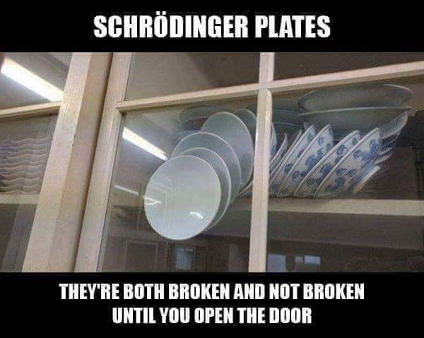 Schrodinger's Plates - more at http://www.thelolempire.com