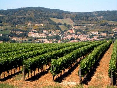 Vignoble Blanquette Limoux