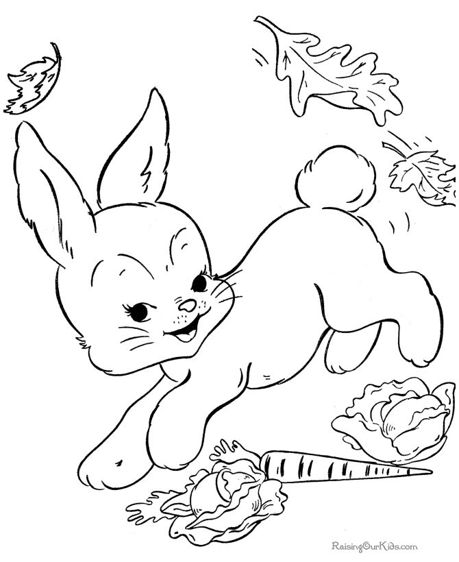 Bunny Coloring Pages Free