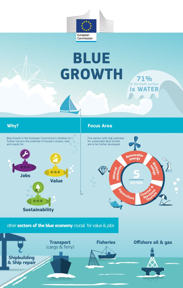 The 'blue' economy represents roughly 5.4 million jobs and generates a gross added value of almost €500 billion a year. However, further growth is possible in a number of areas which are highlighted within the strategy. #BlueGrowth #Sea #MaritimePolicy