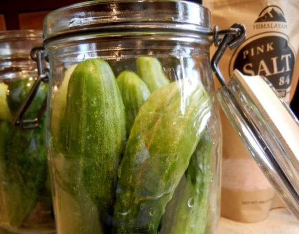 Lacto-Fermented Pickles, No Canning, glucose, cucumber, fermented pickles, DIY, recipe, food, health benefits, adding salt, canning jar, raw, fido jar, spices, weight, enzymes, flavor, sour, crunchy, bubbles, diabetes, indigestion, arthritis, lower risk of cancer, L.brevis, microorganisms, storage, no oxygen, environment, brine, food preservation, lacto-fermentation, healthy gut, good bacteria, kimchi, healing the gut, anticancer, probiotic, Bubbies pickles, sauerkraut, brine, pickling…
