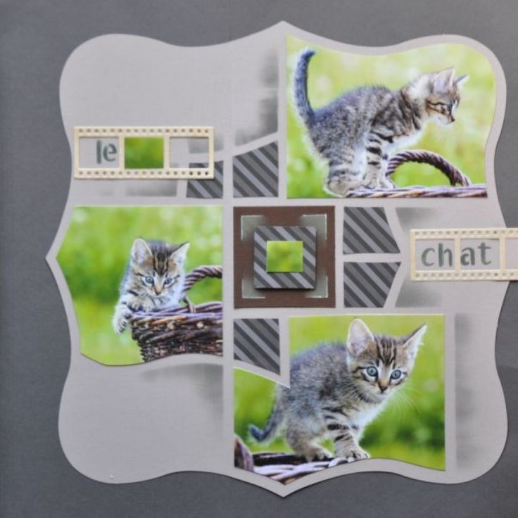 Page Scrap - animaux