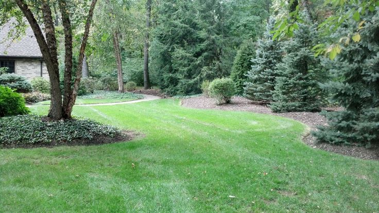 Landscaping Property Lines Pictures : Best images about property line on gardens