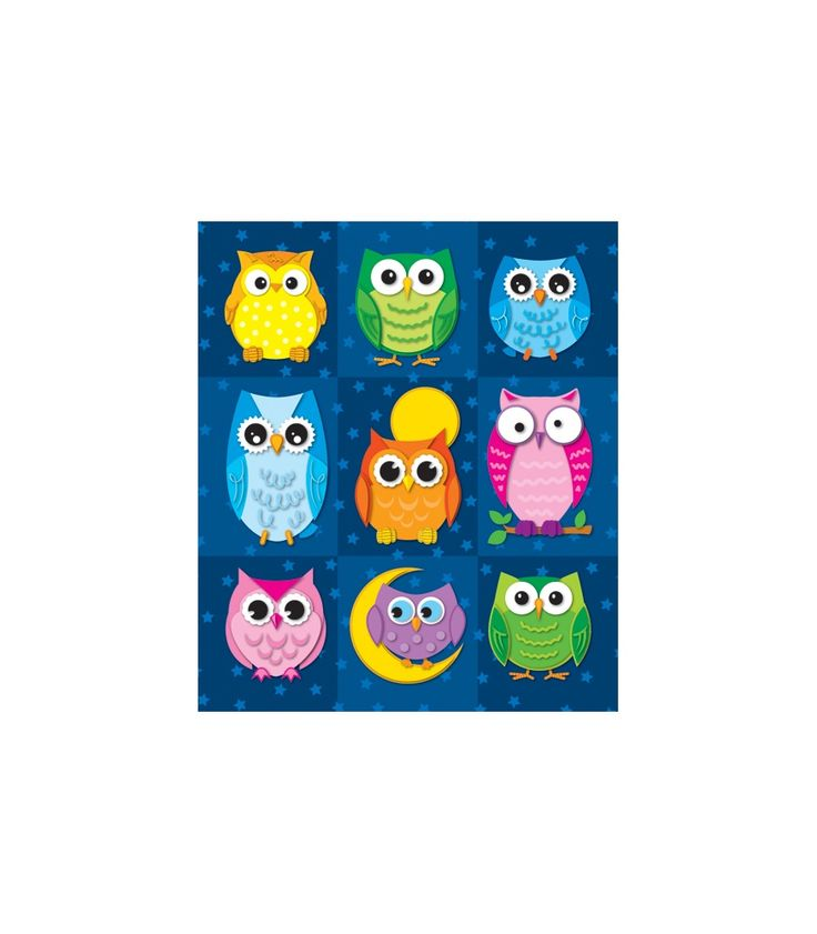 Colorful Owl Classroom Decorations : Perfect for reward or recognition each prize pack of