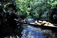 Os Baniwa produzem cestaria de arumã para venda ou troca por bens há décadas. Dependendo da posição da comunidade no Rio Içana, os produtores-comerciantes baniwa saem para vender/trocar seus produtos em Mitú (Colômbia) ou S. Gabriel da Cachoeira. Na década de 50, a preferência era vender em Mitú, o que implicava remar forte rio acima e carregar a cestaria a pé pelo varadouro que ligava a Bacia do Içana ao Uaupés/Colômbia.