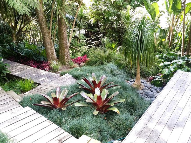 This style is particularly suited to Auckland's climate. The landscape garden designer draws on a range of plant materials reflecting Pacific influences: lush, luxuriant and foliage with splashes of vibrant colour in bushes such as bougainvillea and hibiscus or other exotic plants and shrubs. When combined with palms and cycads, this style