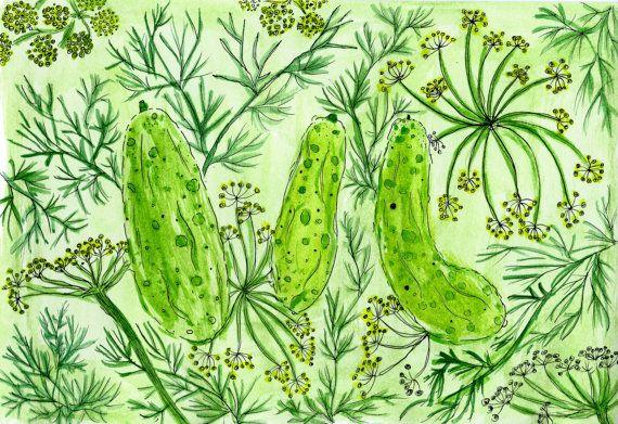 #dillpickles #pickles #stilllife #foodart #foodprints #cucumber #watercolor #watercolour #illustration