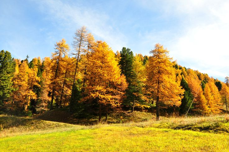 """""""Pila"""" in the Aosta Valley region of northern Italy. When is the autumn season."""