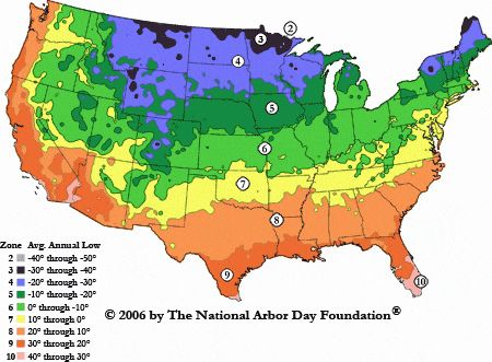 Planting zones - knowing what climate you live in so that you can tailor the plants that you pick for your yard.