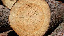 l'affinamento in legno