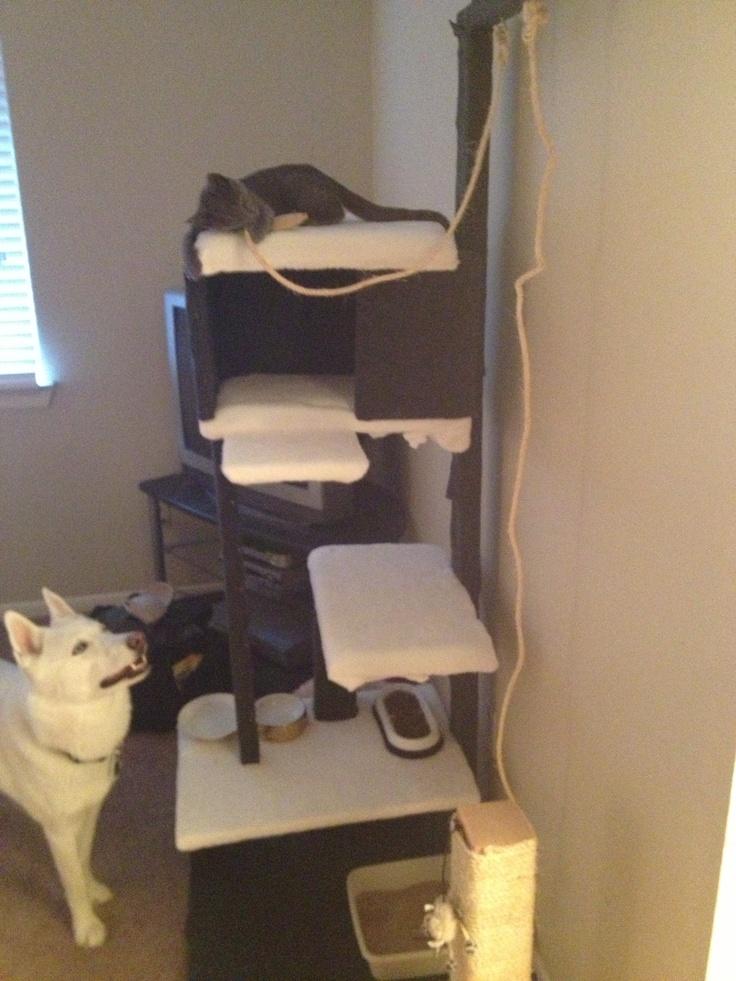 Homemade cat tower pet ideas pinterest homemade for Homemade cat tower