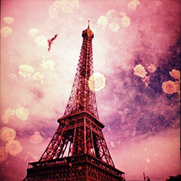 Pinky Floral Paris
