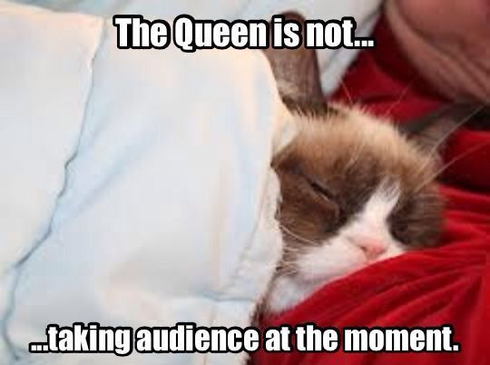 The Queen is not taking an audience at the moment.