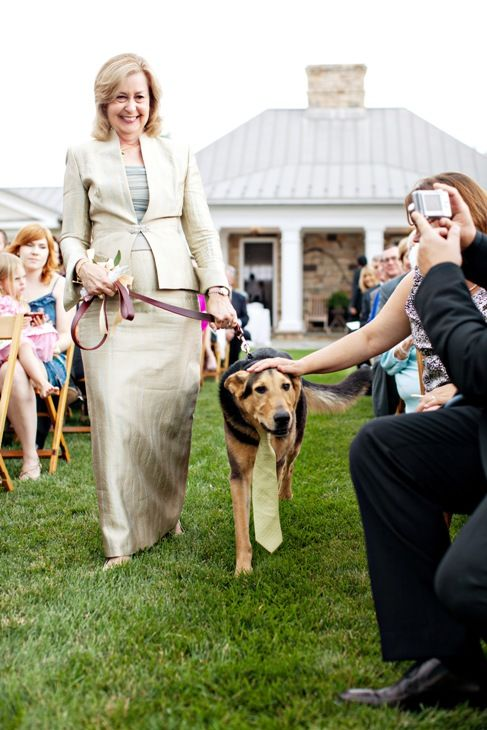 dog participates in wedding ceremony - at home wedding in Virginia - by DC wedding planner Bellwether Events