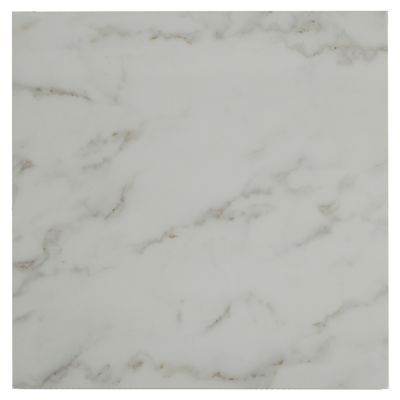 <p>This 24in. x 24in. Carrara White Ceramic Tile has a high gloss finish.</p><p>Ceramic tiles can add an attractive touch to floors and walls throughout the home. Simple, clean designs are perfect for a modern home, and intricate tiling designs are ideal for a classic, ornate style in a bathroom or kitchen setting. Ceramic tile is easy to clean and maintain for long-lasting beauty.</p>