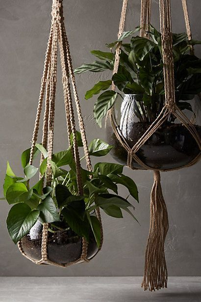 These jute macrame plant hangers come with the recycled glass planter- just add a plant and you're ready to go. #plants #green #bedrooninspo Reposted by www.ettitude.com.au