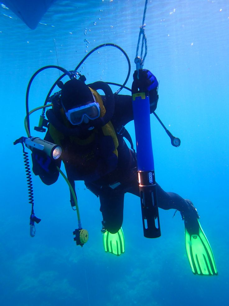 www.bioConsult-svi.de; Research Diver with YSI EXO2 multiparameter probe