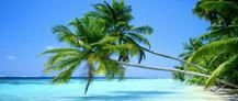 Si quieres viajar a #PuntaCana la mejor forma de hacerlo es disfrutar de los mejores #hoteles y sobre todo al mejor precio. Por eso aquí tienes la mejor #oferta para los Hoteles de 5***** http://www.felicesvacaciones.es/%C3%BAltima-hora-punta-cana-hoteles-5-1041/