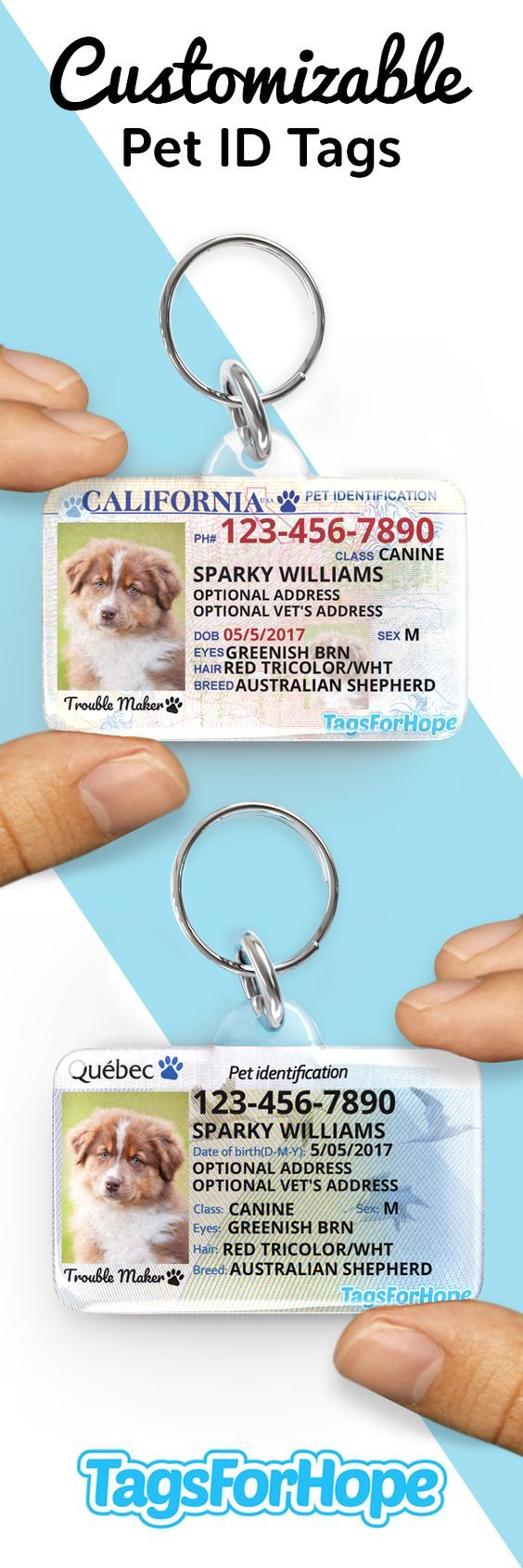 Maintain Your Pets Secure. Each tag bought supplies an animal in want with meals, t…