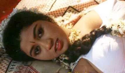 Devika hot mallu masala movie actress photos | Mallu Masala Hot Actress