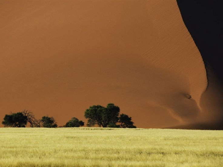 Dune 45 by Ismaele Benati