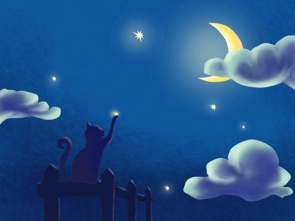 notte di san lorenzo: frasi sulle stelle cadenti