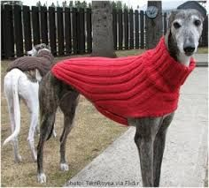Risultati immagini per greyhound jackets free pattern