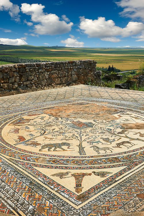 Roman mosaic from The House of Orpheus showing Orpheus playing a lute in the centre with wild African animals surrounding him. From the triclinium or the dining room of the villa looking out across the fertile plains. Volubilis Archaeological Site, near Meknes, Morocco