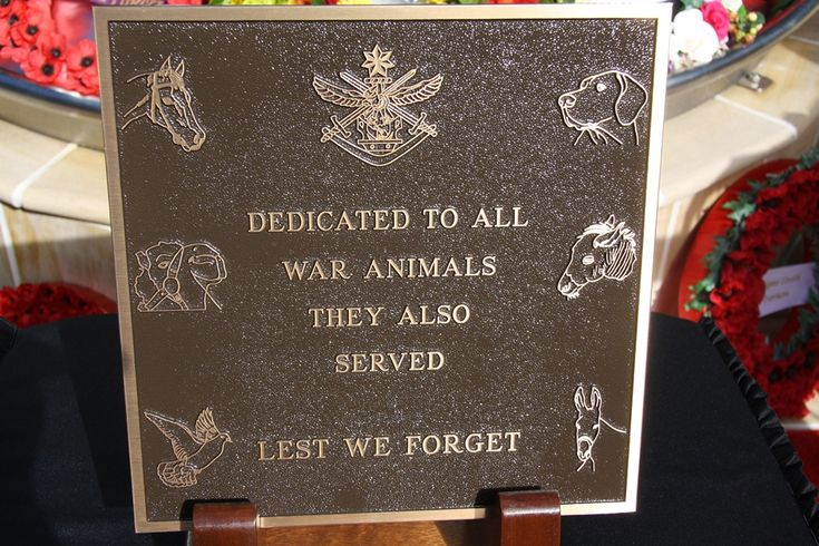 Image result for remember the animals of war