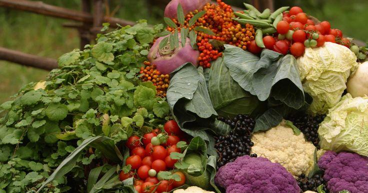 Colores de la coliflor. La coliflor muestra más que el básico color blanco. Este vegetal crucífero también produce cogollos púrpura, verdes y color cheddar comestibles. Todos los tipos de coliflor tienen grandes cantidades de vitaminas A, K, magnesio, vitaminas B y una larga lista de nutrientes. Agrega un arco iris de coliflor picada en las ensaladas, o hiervela y ...