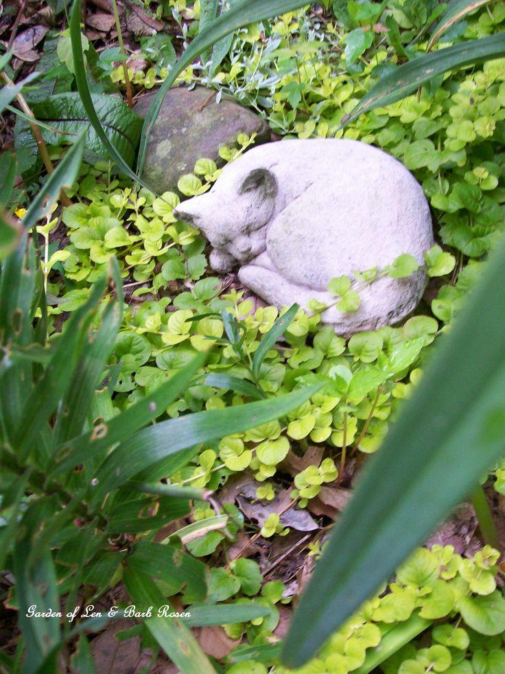 Mamie's Garden (6/18/2012) Garden of Len & Barb Rosen