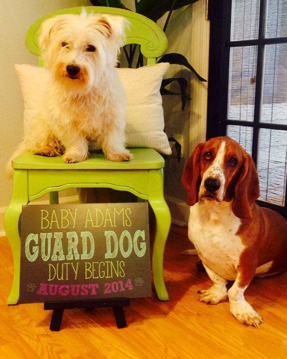 Pregnancy Announcement Chalkboard Photo Prop Baby Guard Dog – Birth Announcement with Dog