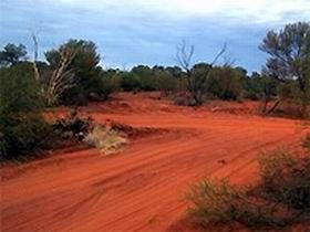 Tallaringa Conservation Park is a vast wilderness of vegetated dunes and gibber rises, located 100 kilometres due west of Coober Pedy on the fringe of the Great Victoria Desert.  via Gaander