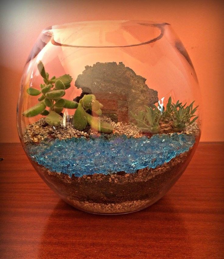 """Terrarium Santorini !!! Volcanic stone usage, special succulents resembling to the two most popular plants of Santorini, which is the prickly pear and Chamairopas and coarse """"black"""" sand, typical of the island. A Terrarium ideal for home or office, to have your favorite island with you always. Dimensions: HEIGHT: 20cm. MAXIMUM MEAN PERIMETER: 64cm. For more information (selling price, payment and shipping) please send us Inbox!"""
