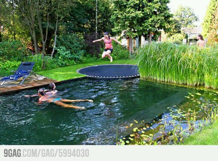 Pool That Looks Like A Pond For The Home Pinterest