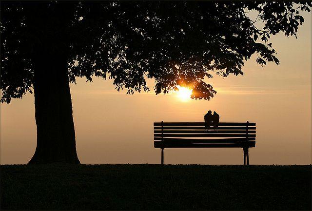 Quando due anime, che si sono cercate tanto a lungo nella folla,si sono finalmente trovate, quando si sono accorte di essere ben sortite, in sintonia e compatibili, in una parola di essere simili, allora si stabilisce per sempre tra di loro un'unione ardente e pura come esse sono, un'unione che comincia sulla terra e continua per sempre nel cielo. Questa unione è amore, vero amore, come in verità pochissimi uomini riescono a concepire… Victor Hugo