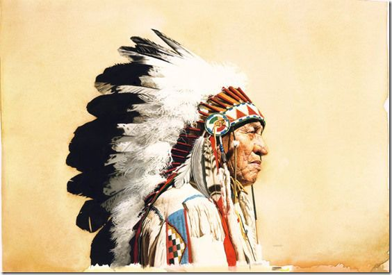 31 Long-Forgotten Native American Herbal Remedies
