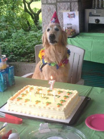 July 27th, Poppy's day