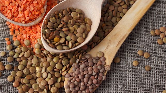 If you think of lentils as just a rather bland addition to soups and stews, are you in for a treat! Not only are lentils a powerhouse of nutrition, but they have nearly limitless possibility for delicious dishes from burgers to salads.