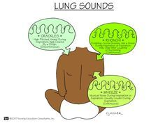 "cupcakern: "" Lung sounds: crackles, ronchi, and wheeze """