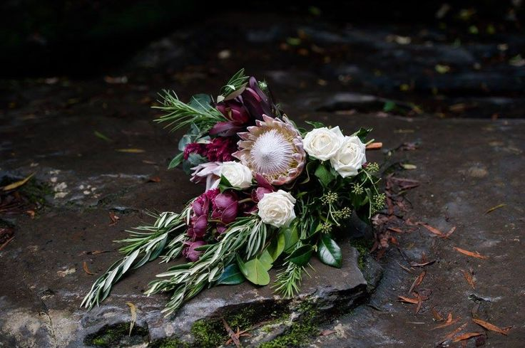 Wedding bouquet by Bettie bee blooms Photo by: @sarataylorphotos King proteas, unstructured, native bouquet, burgundy, boho