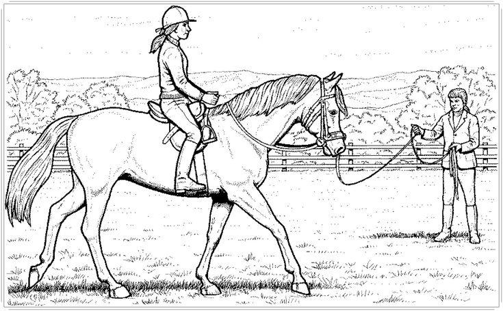Ausmalbilder Pferde mit Reiterin (mit Bildern ...