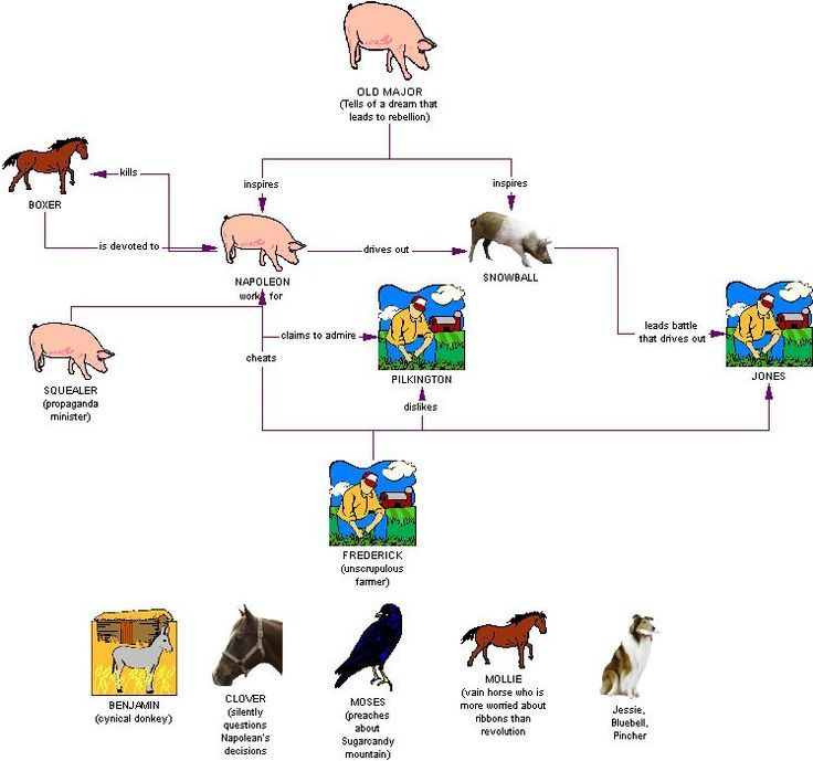 a literary analysis of the animal farm Literary analysis, george orwell - animal farm as a fable.