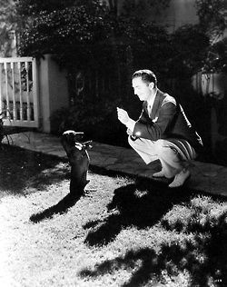 Actor William Powell plays with his Dachshund on acertaincinema.com