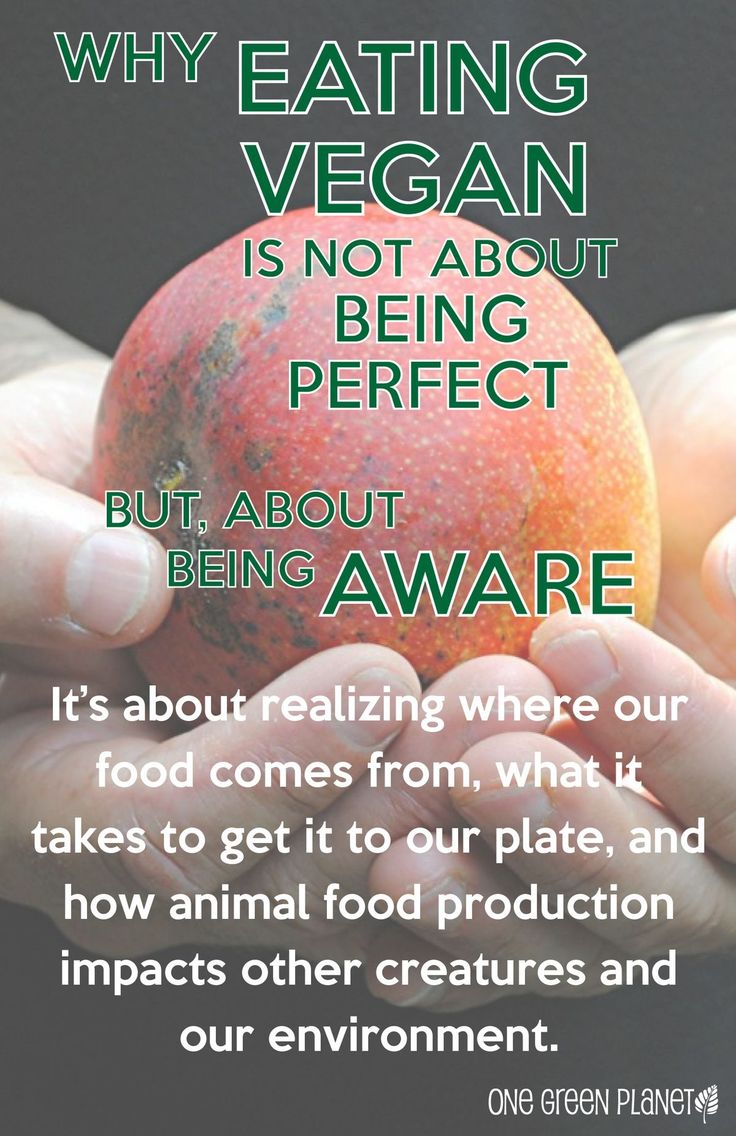 why i am a vegetarian Currently reading why i started eating meat after 21 years as a vegetarian share pin it tweet flip  why i started eating meat after 21 years as a vegetarian  and am learning to accept my .