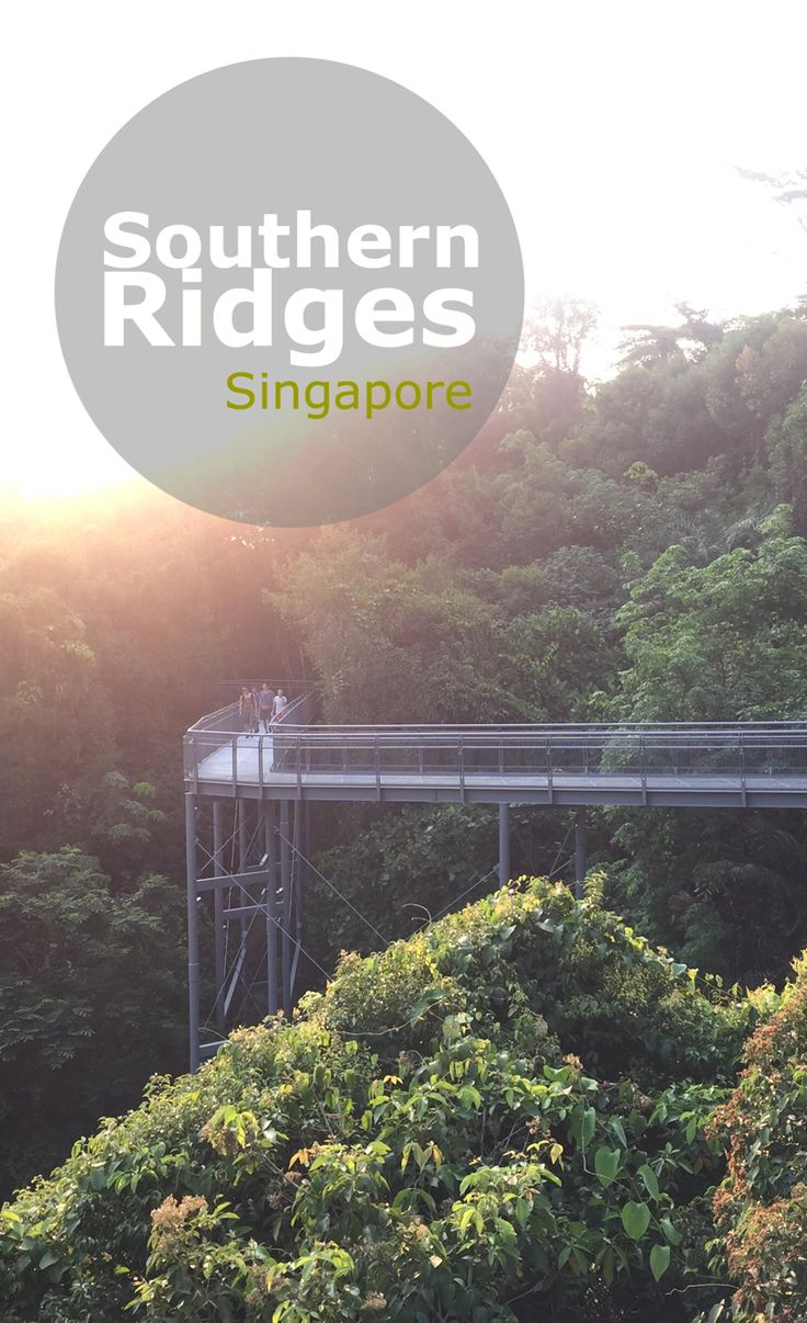 Located in the tiny island of Singapore, the Southern Ridges are a must visit green zone of the country - perfect for hikes, cycling or just chilling out in the woods with friends