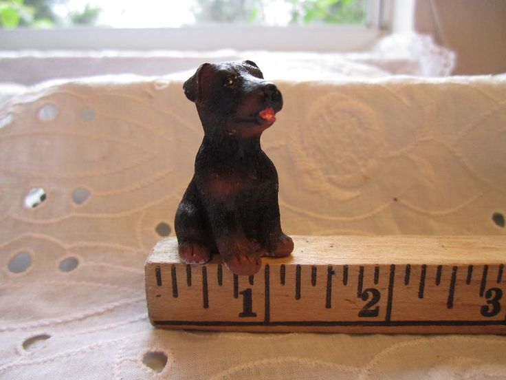 Miniature Rottweiler Resin Pit Bull Tiny Puppy Terrier Dog Figurine