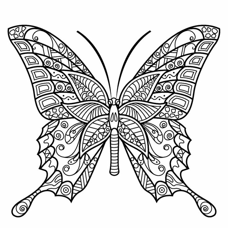 260 best images about BUTTERFLY coloring pages on ...